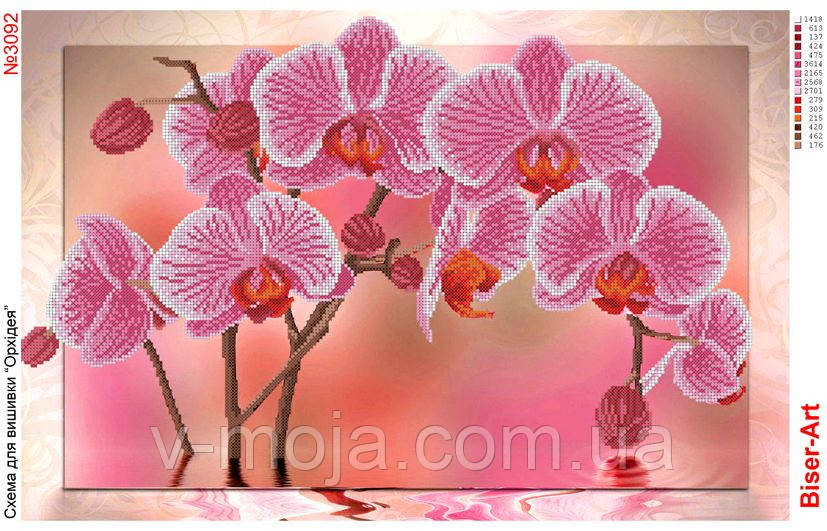 Схема вишивки орхідея