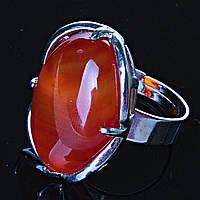 Кольцо без р-р  лапка Сердолик