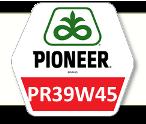 Семена Кукурузы ПР39В45 Pioneer