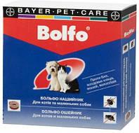 Ошейник антиблошиный  BOLFO  для кошек   и собак мелких пород 35 см