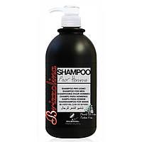 KLERAL SYSTEM Brizzolina Shampoo Шампунь для мужчин 1000 мл