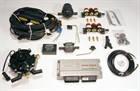 Инжекторная система STAG-4 цилиндра (Редуктор Tomasetto Alaska + форсунки Valtek + фильтр)