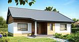Кирпичный дом. Строим кирпичный дом в Днепре, Киеве. Качественное строительство, фото 2