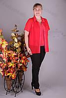 Блуза 2904-460/3 шифон больших размеров оптом