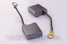 Щетки для электродвигателей 5,8х16х20