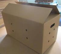 Куплю ящик под яйцо куриное