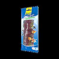 Tetra DecoArt Plantastics Red Foxtail Искусственное растение
