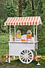 Лимонадный бар на Вашем празднике, фото 2