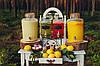 Лимонадный бар на Вашем празднике, фото 6