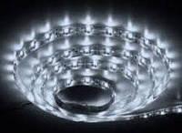 Светодиодная лента smd5630 ІР20 6500К белая 60led
