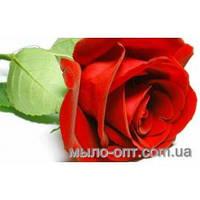 Отдушка Роза - 30 мл.