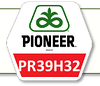 Семена кукурузы ПР39Г83 Pioneer