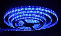 Светодиодная лента smd3528 ІР65 синяя 60led