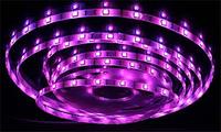Светодиодная лента smd3528 ІР20 розовая 60led