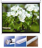 """Экран для проектора 150""""(300х220см) LOGAN PRM5"""