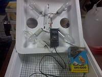 Инкубатор с терморегулятором для инкубатора .