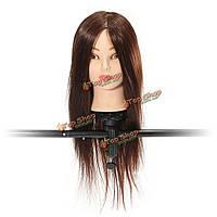 60%-я настоящая манекенщица обучения каштановых волос парикмахерских услуг возглавляет зажим