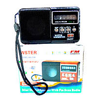 Мобільна колонка WS-239