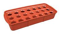 """Луковичница пластиковая (37×16×6 см). Лоток для выращивания лука """"ЧП КВВ"""" + Видео"""