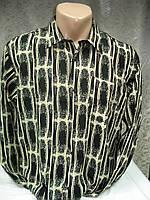 Рубашка Windsor подростковая, фото 1