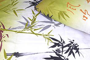 Полуторное постельное (AN151/245), фото 2