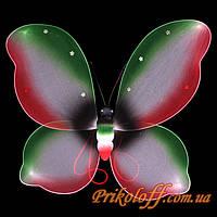 Крылья бабочки, цветные