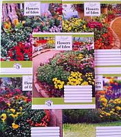 Зошити учнівські Райський сад-16 12 аркушів клітинка малюнки в асортименті