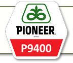 Семена кукурузы П9400 Pioneer