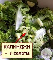 Семена КАЛИНДЖИ кладем во всевозможные сезонные салаты!