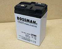 Свинцово-кислотные (SLA). Аккумулятор Bossman Profi (3FM6) 6V 6AH