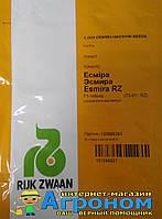 Семена томата индетерминантного Эсмира F1, 1000 семян RZ (Рийк Цваан), Нидерланды