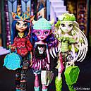 Кукла Monster High Кьерсти Троллсон (Kjersti Trollsøn) из серии Brand-Boo Students Монстр Хай, фото 9