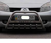 Кенгурятник WT на Renault Kangoo (c 2008---) Рено Кенго