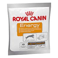 ROYAL CANIN повседневные корма ENERGY - Крокеты Роял Канин для дрессировки собак и щенков 50грм