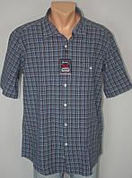 Мужская рубашка-тенниска в клетку