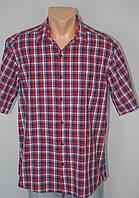 Мужская рубашка-тенниска