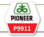 Семена кукурузы П9911 Pioneer