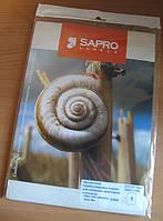 Пленка самоклеящаяся SAPRO белая,А4 (16 на листе 99,1х33,9 мм)25листов,для цветн.лазерного принтера