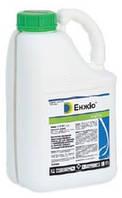 Энжио 247 КС (5л) - инсектицид на зерновые, плодовые, овощные и др.