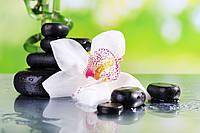Кафель в ванную, Орхидея спа. Печать на керамической плитке, размер плитки 20х30см.