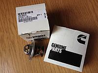 Термостат к каткам Xiagong XG6141 XG6121 Cummins 6BT5.9-C