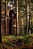 Настенный обогреватель картина Бунгало, фото 7