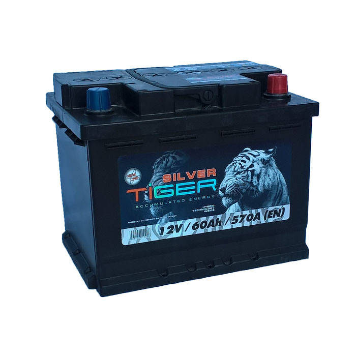 Акумулятор Tiger Silver 60Ah 570 A[EN] (-/+), фото 2