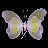 Крылья бабочки, большие белые