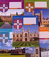 Тетради ученические  CAMBRIDGE History -16 12 листов в косую