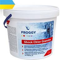 Хлор быстрого действия без резкого запаха Froggy Хлор грануляр, 5 кг