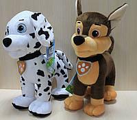 Собачка Щенячий патруль, Цуценя Товарищ 2, мягкая игрушка производитель Копыця, Украина