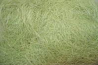 Сизаль (волокно)