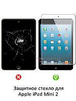 Защитное стекло для Apple iPad Mini 2