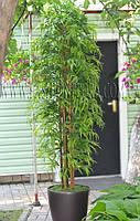 Бамбук искусственный с натуральным стволом 230 см
